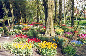 Demonstration gardens at Anna Paulowna, Holland