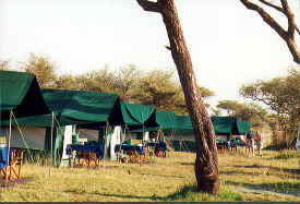 Tent camp in the Serengeti